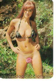 Lote D De 25 Calendarios De Chicas Sexy Años 70 Vendido En
