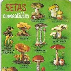 Coleccionismo Calendarios: SETAS COMESTIBLES 1995. Lote 18857309