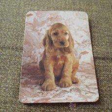 Coleccionismo Calendarios: CALENDARIO 2008 CACHORRO. Lote 20638858