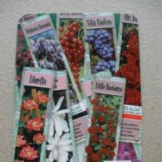 Coleccionismo Calendarios: CALENDARIO 2010 - ROCALBA. Lote 47383802
