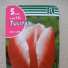 Coleccionismo Calendarios: CALENDARIO 2010 - ROCALBA. Lote 21699934