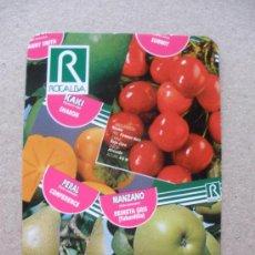 Coleccionismo Calendarios: CALENDARIO 2010 - ROCALBA. Lote 21699940