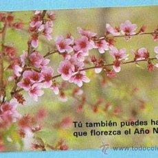 Coleccionismo Calendarios: CALENDARIO LIBRERIA SAN PABLO, 1987.. Lote 30799125