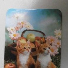 Coleccionismo Calendarios: CALENDARIO DE ANIMALES AÑO 1986 CAL-1912. Lote 33929358