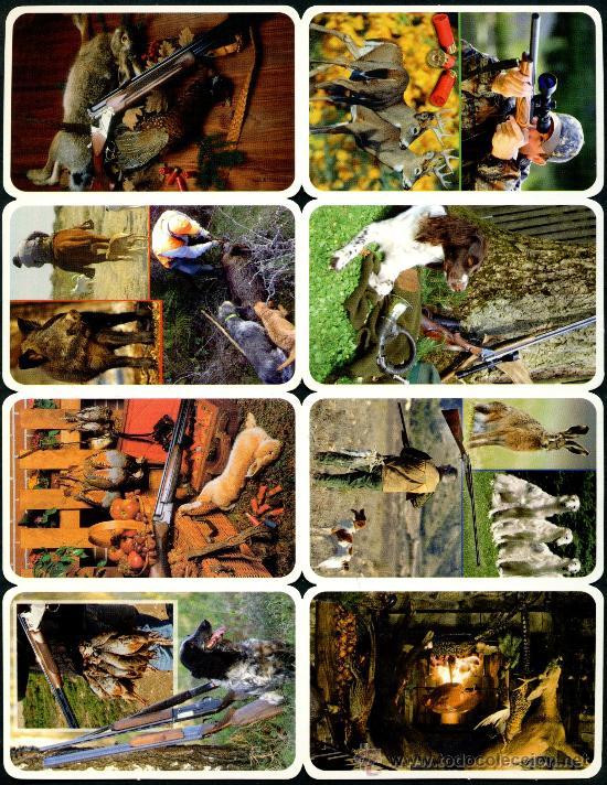 Coleccionismo Calendarios: 128 Calendarios Bolsillo – TT 2013 - Foto 5 - 112139024