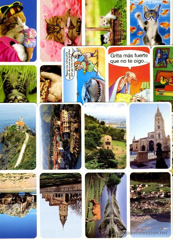 Coleccionismo Calendarios: 128 Calendarios Bolsillo – TT 2013 - Foto 10 - 112139024