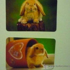 Coleccionismo Calendarios: LOTE CALENDARIOS EXTRANJEROS ANIMALES CONEJOS.- 2008-2010. Lote 37389110