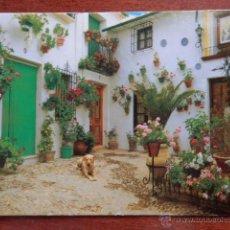 Collezionismo Calendari: CALENDARIO DE BOLSILLO GARDEN CENTER MAGAROLA 2006 - DIVERSOS AUTORES. Lote 37155108
