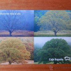 Collezionismo Calendari: CALENDARIO DE BOLSILLO CAJA ESPAÑA 2008. 1 - DIVERSOS AUTORES. Lote 37308712