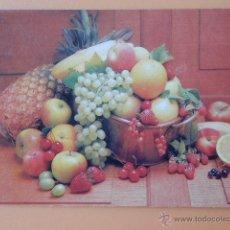 Collezionismo Calendari: CALENDARIO DE BOLSILLO JIP 1993 - DIVERSOS AUTORES. Lote 37544078