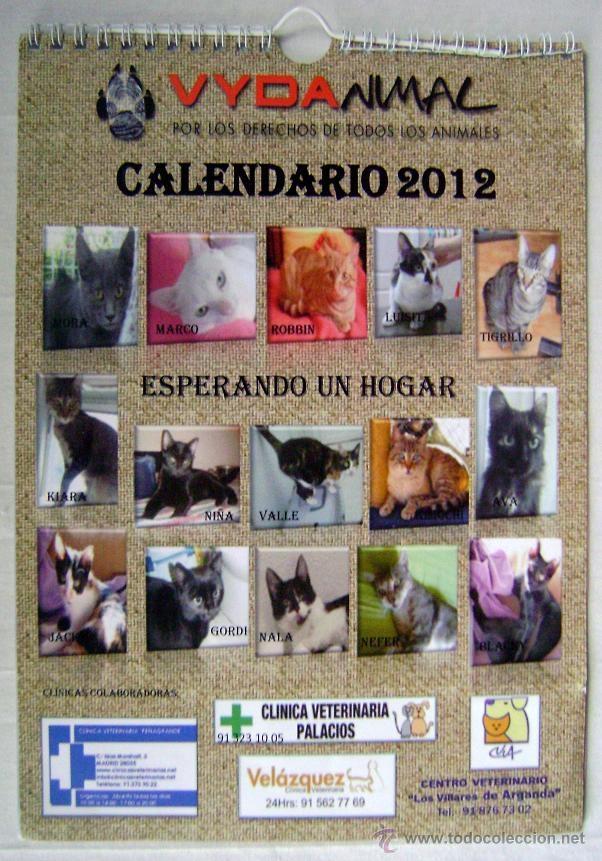 calendario gatos de pared 2012 - Comprar Calendarios antiguos en ...