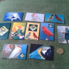 Coleccionismo Calendarios: LOTE DE 10 CALENDARIOS DE BOLSILLO 2013 PAJAROS PAJARERIAS CRIADORES NACIONALES BIRDS SPAIN CALENDAR. Lote 42646643