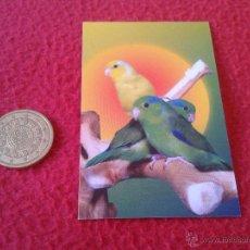 Coleccionismo Calendarios: CALENDARIO DE BOLSILLO AÑO 2013 PUBLICIDAD PAJARERIA BURGALESA ACUARIUM BURGOS. Lote 42790149