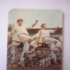 Coleccionismo Calendarios: 1970 EMBUTIDOS-CONSERVAS PAMPLONICA S.A. . Lote 44841738