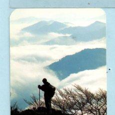 Coleccionismo Calendarios: CALENDARIO DE PUBLICIDAD BANCO BBK DEL AÑO 1994. Lote 47584313