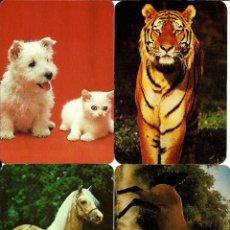 Coleccionismo Calendarios: CALENDARIOS (4) ANIMALES. Lote 47751964