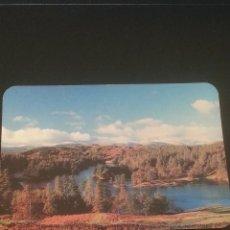 Coleccionismo Calendarios: CALENDARIO DE BOLSILLO - 1991. Lote 49243428