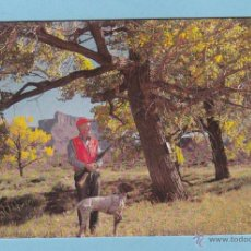 Coleccionismo Calendarios: CALENDARIO 1983 - PAISAJE. ESCENA DE CAZA. SERIE Nº 171. Lote 49592882