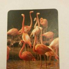 Coleccionismo Calendarios: CALENDARIO, FLAMENCOS 1997. Lote 54298436