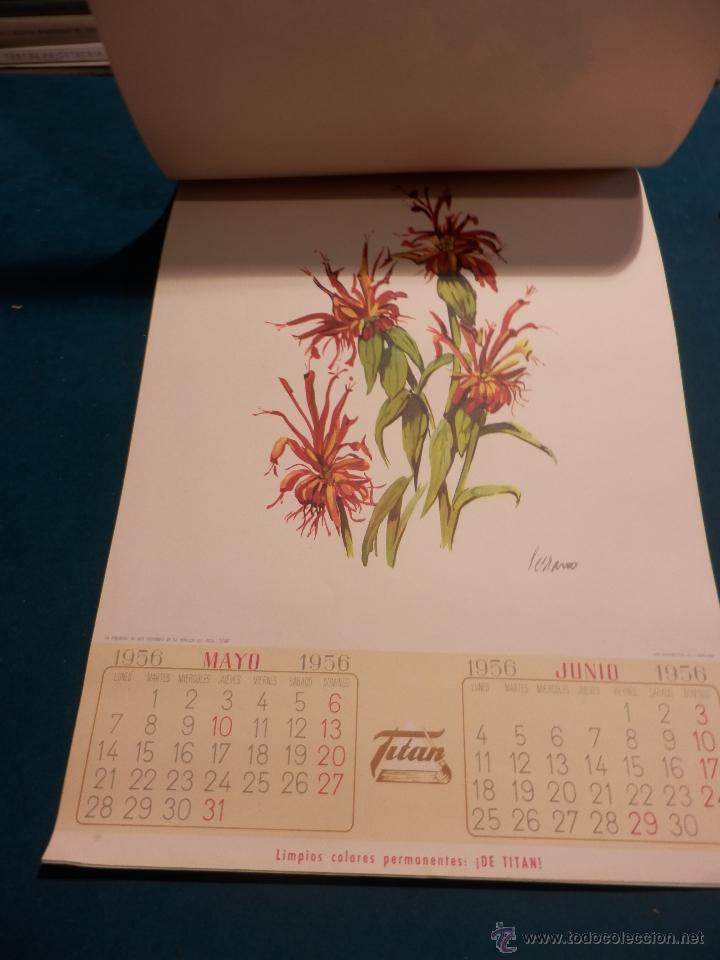Coleccionismo Calendarios: LOS COLORES EN EL REINO DE LAS FLORES - CALENDARIO DE PARED INDUSTRIAS TITAN AÑO 1956 (VER FOTOS) - Foto 6 - 54734641