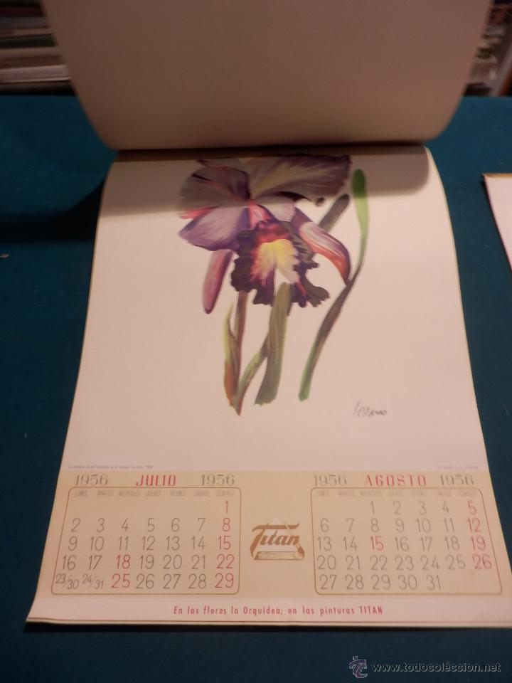 Coleccionismo Calendarios: LOS COLORES EN EL REINO DE LAS FLORES - CALENDARIO DE PARED INDUSTRIAS TITAN AÑO 1956 (VER FOTOS) - Foto 7 - 54734641