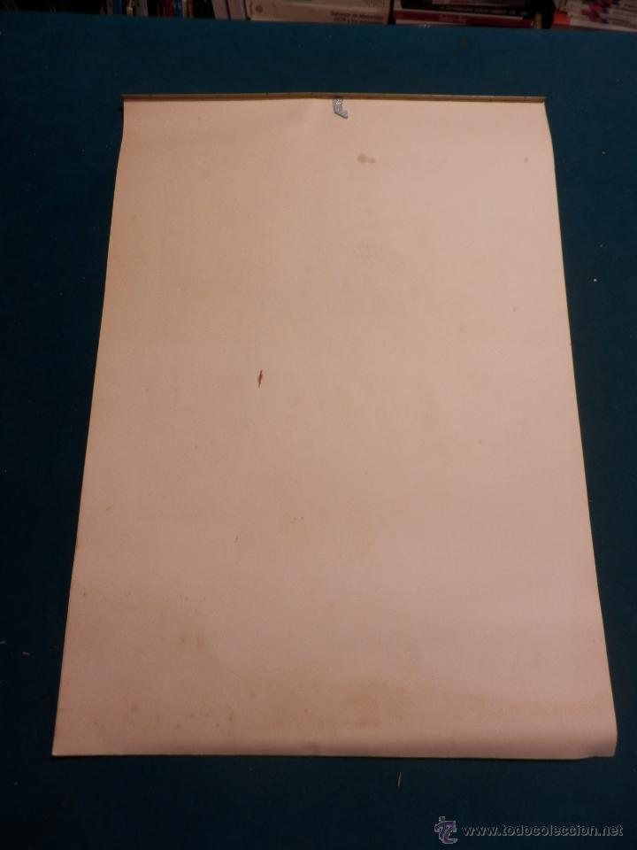 Coleccionismo Calendarios: LOS COLORES EN EL REINO DE LAS FLORES - CALENDARIO DE PARED INDUSTRIAS TITAN AÑO 1956 (VER FOTOS) - Foto 10 - 54734641