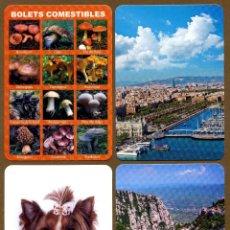 12 Calendarios de Bolsillo - 2017 CAT ¡¡NOVEDAD!!