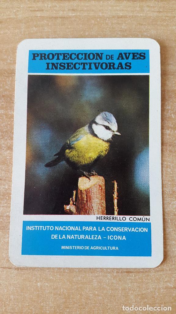 CALENDARIO FOURNIER ICONA - PROTECCION AVES INSECTIVORAS - HERRERILLO COMÚN AÑO 1974 - VER FOTOS (Coleccionismo - Calendarios)