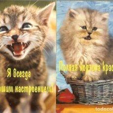 Coleccionismo Calendarios: 2 CALENDARIOS DE BOLSILLO DE RUSIA - 2005 - GATOS. Lote 82793484