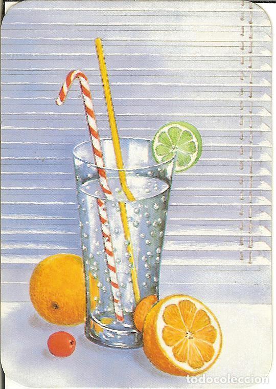 CALENDARIO DE SERIE - 1988 - CB - 113 (Coleccionismo - Calendarios)