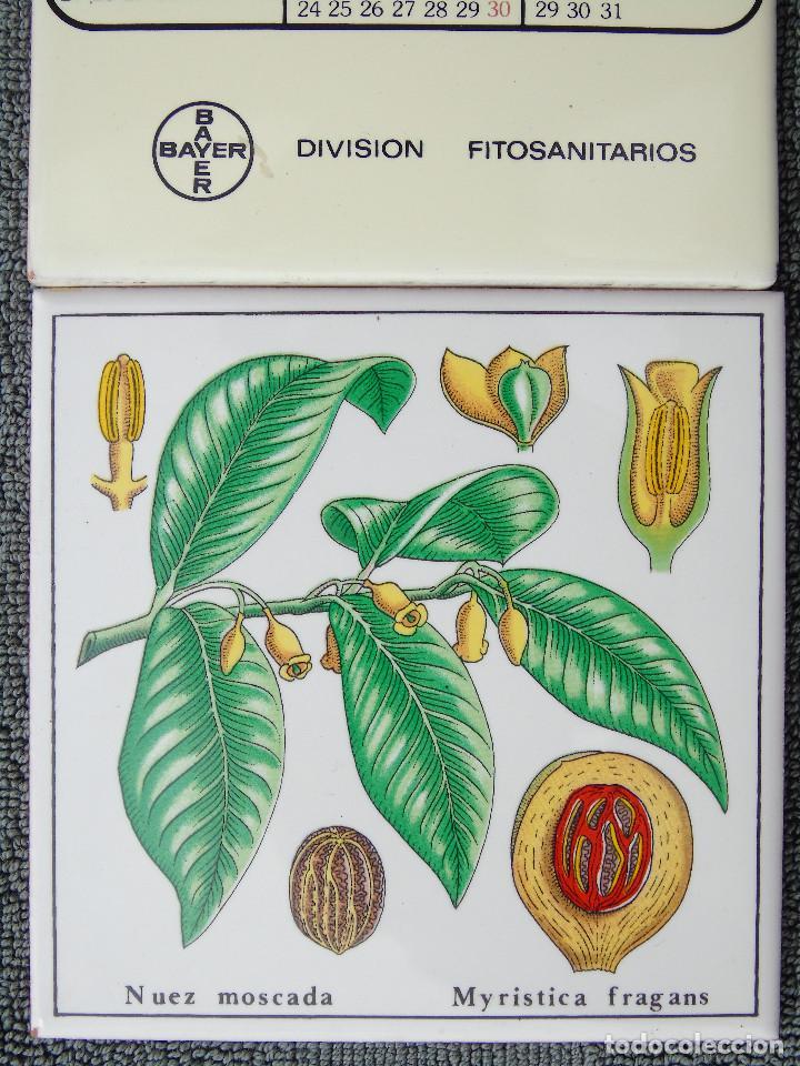 Coleccionismo Calendarios: CALENDARIO EN CERÁMICA. 1980 BAYER HISPANIA COMERCIAL.S.A. DIVISIÓN FITOSANITARIOS. 3 AZULEJOS. - Foto 2 - 94158940