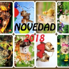Coleccionismo Calendarios: 80 CALENDARIOS BOLSILLO – TT 2018. Lote 112441124