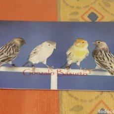 Collezionismo Calendari: CALENDARIO DE BOLSILLO PUBLICITARIO BURGOS ANIMALES PAJAROS. AÑO 2018. Lote 125144322