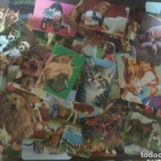 Coleccionismo Calendarios: LOTE 50 ANTIGUOS CALENDARIOS AÑOS 70, 80 Y 90 TEMATICA ANIMALES. Lote 128606959