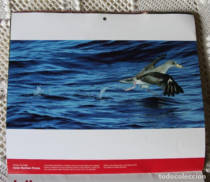 Coleccionismo Calendarios: Calendario de Caixa Sabadell de fotografías naturales (2010) - Foto 3 - 140110126