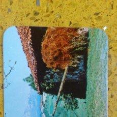 Coleccionismo Calendarios: CALENDARIO,S ALMANAQUE,S DE BOLSILLO . Lote 147784402
