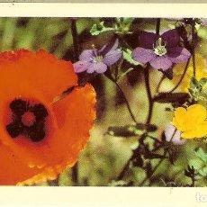 Coleccionismo Calendarios: CALENDARIO DE BOLSILLO DE FRANCIA - 1978 - LES FILS DE D. SOUCHET - REUILLY. Lote 154341190