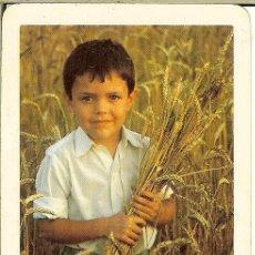 Coleccionismo Calendarios: CALENDARIO PUBLICITARIO - 1979 1980 - BANCO DE SANTANDER. Lote 154529858