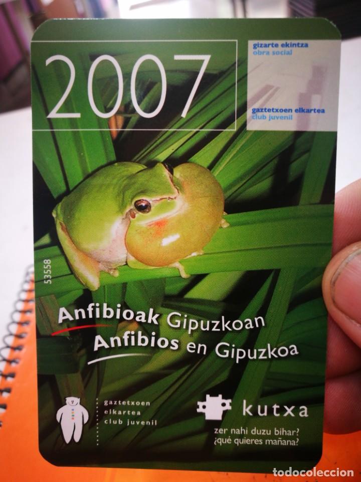CALENDARIO KUTXA ANFIBIOS EN GIPUZKOA 2007 (Coleccionismo - Calendarios)