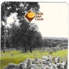 Coleccionismo Calendarios: CALENDARIO TORTA DEL CASAR 2005. Lote 176402110