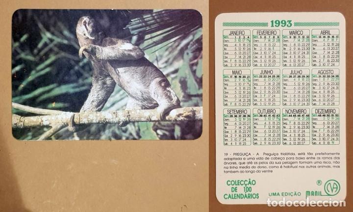 FAUNA - CALENDARIO EDITADO EN PORTUGAL - AÑO1993 (Coleccionismo - Calendarios)