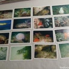 Coleccionismo Calendarios: NAIPES COMAS. Lote 180222755