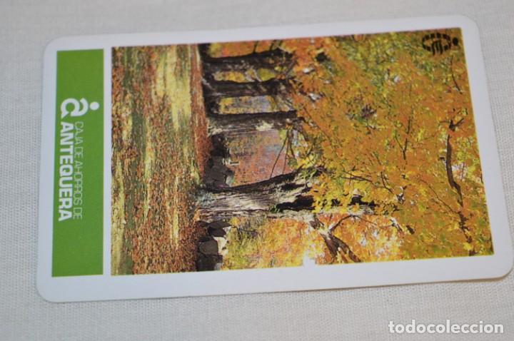 Coleccionismo Calendarios: LOTE 9 CALENDARIOS variados FOURNIER - Años 60/70/80 y 90 - FOURNIER SPAIN - ¡Mira fotos y detalles! - Foto 11 - 190465172