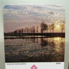 Coleccionismo Calendarios: CALENDARIO DE BOLSILLO CAIXA DE CATALUNYA 1984 . Lote 194358100
