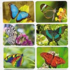 Coleccionismo Calendarios: -76812 8 CALENDARIOS MARIPOSAS, ANIMALES, AÑO 2020, EMISION LIMITADA, CON PUBLICIDAD. Lote 194679985