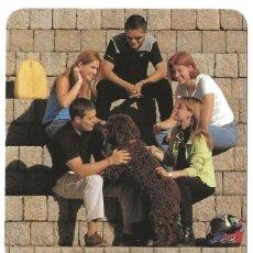 Coleccionismo Calendarios: CALENDARIO FOURNIER - AÑO 1998 - CAJA VITAL - NUEVO. Lote 194883648