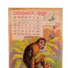 Coleccionismo Calendarios: RARO CALENDARIO UN SOLO MES, OCTUBRE 1887 MC ELREE´S WINE OF CARDUI, CHATTANOOGA MONO ESCORPIÓN AA. Lote 205762971