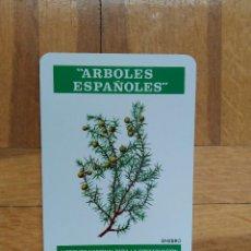 Coleccionismo Calendarios: CALENDARIO FOURNIER ICONA. ARBOLES ESPAÑOLES. ENEBRO AÑO 1975. NUEVO. VER FOTO ADICIONAL. Lote 214970365
