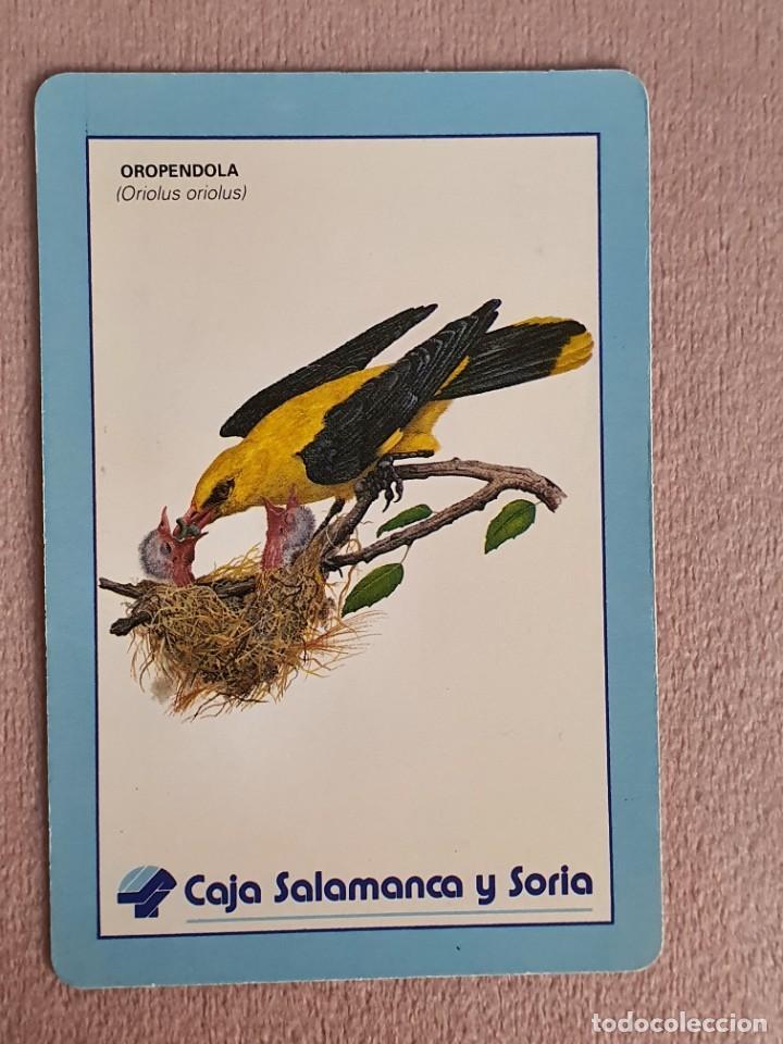CALENDARIO AÑO 1982. CAJA SALAMANCA Y SORIA (Coleccionismo - Calendarios)