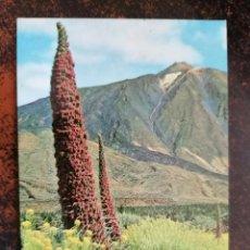 Coleccionismo Calendarios: CALENDARIO NO FOURNIER - RON GUAJIRO. AÑO 1978.. Lote 221711605